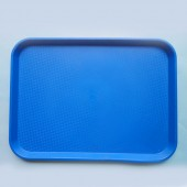 Larger Serving Tray - Blue